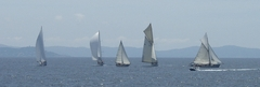 regates_imperiales_2009_bateaux_37.jpg