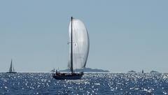 regates_imperiales_2009_bateaux_38.jpg